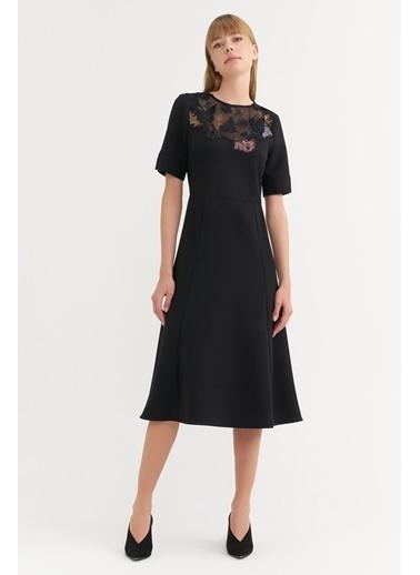 BGN Siyah - Aplike Yaka Detaylı Midi Elbise Siyah